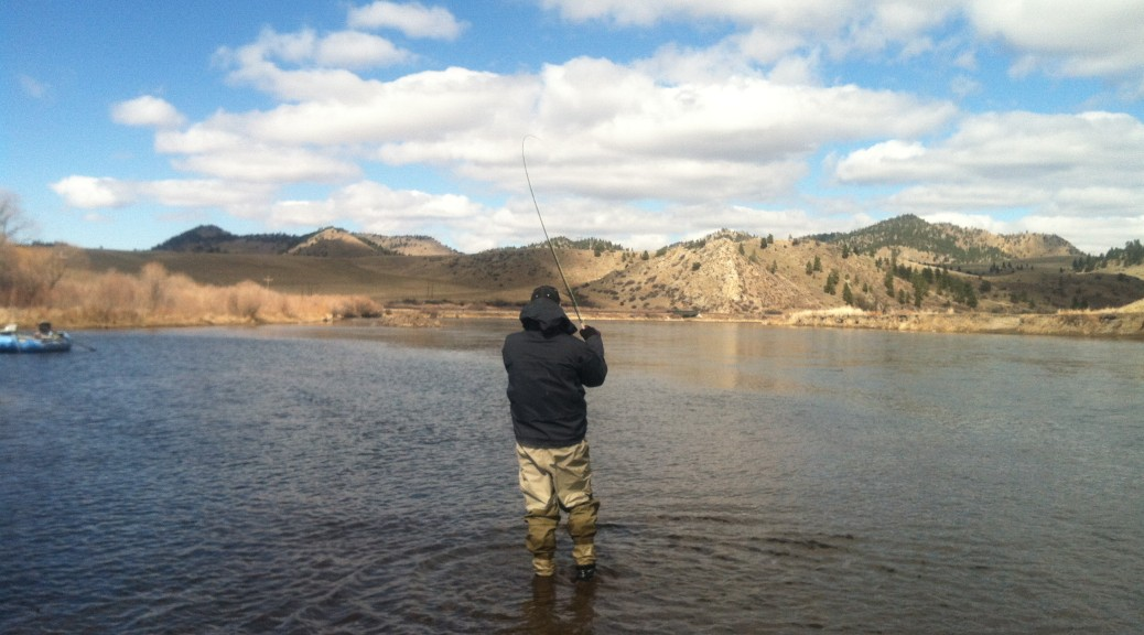 Missouri river early spring bitterroot river fishing guides for Rock creek montana fishing report
